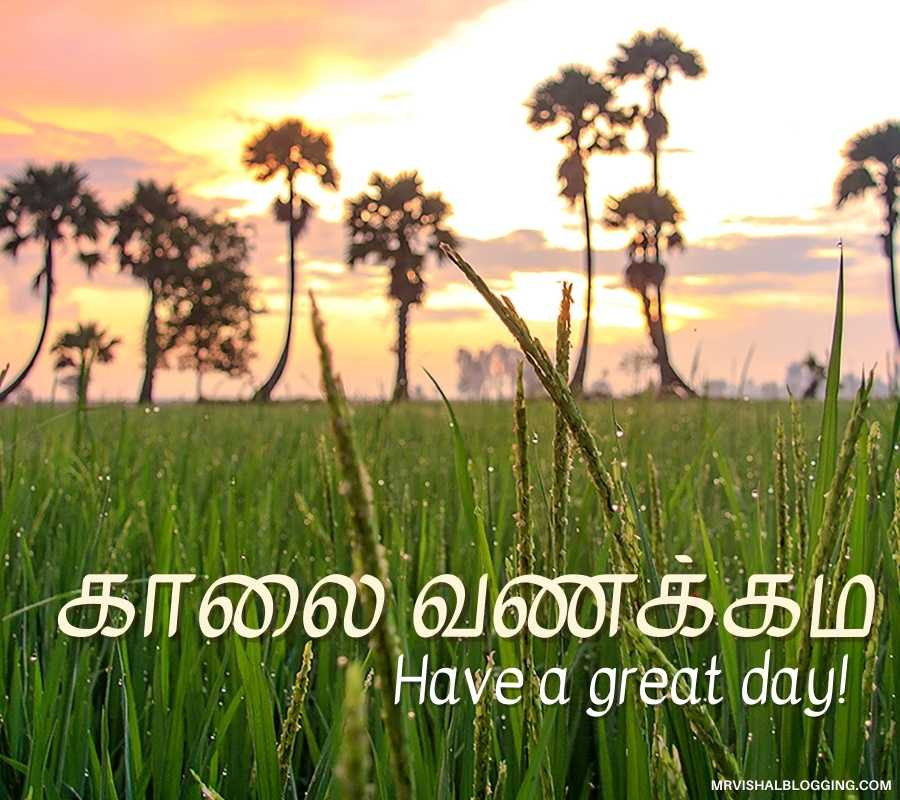 Good Morning God Photos In Tamil
