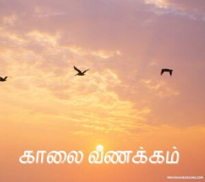 sai baba good morning images in tamil