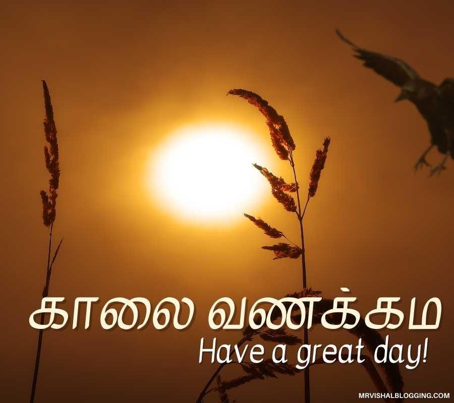Tamil Greetings Images