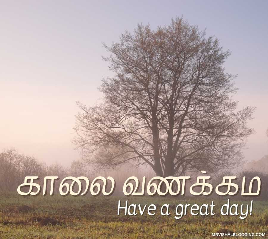 Good Morning Tamil Photos