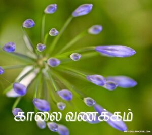 good morning and good night images in tamil