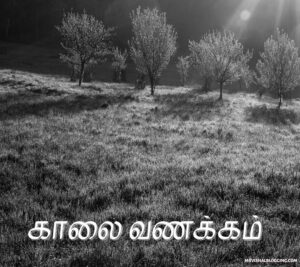 good morning in tamil images download sharechat new