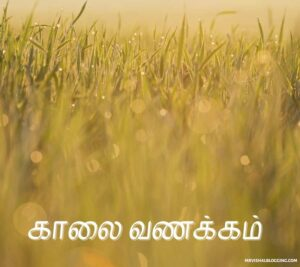 good morning my love images in tamil