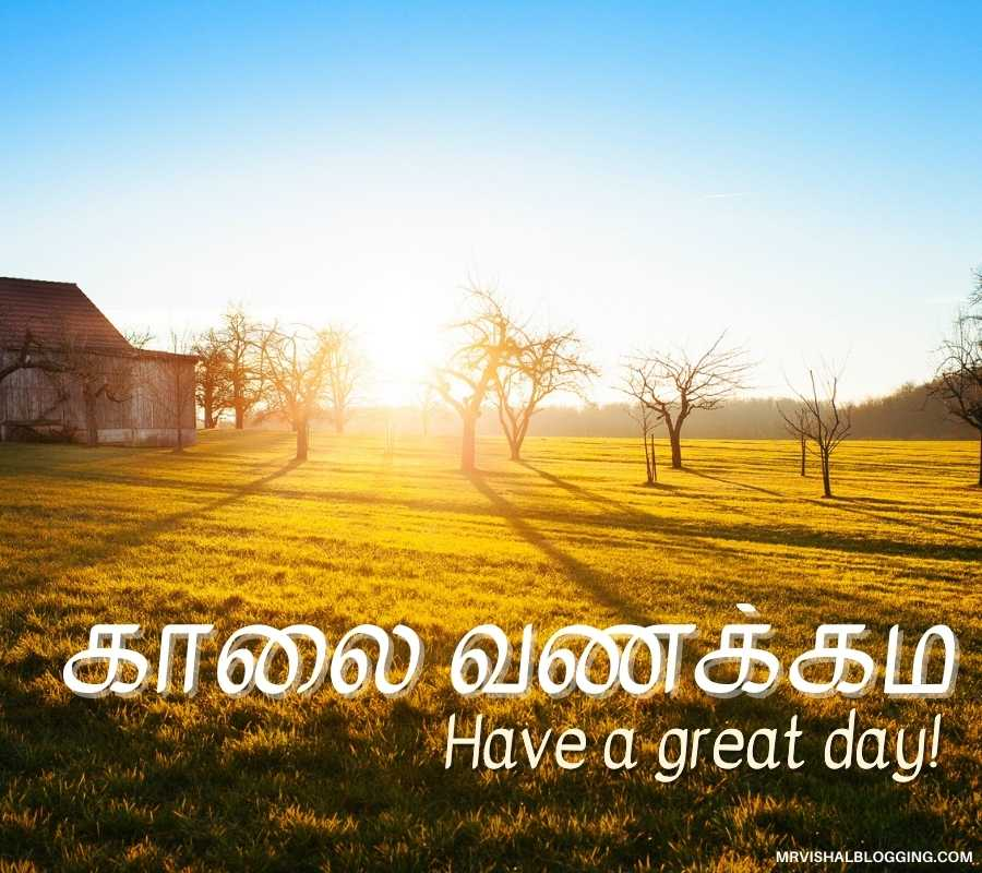 Good Morning Images With Quotes In Tamil