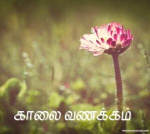 romantic good morning images in tamil