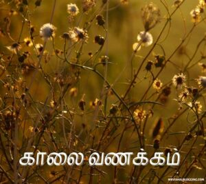 romantic good morning images for husband in tamil