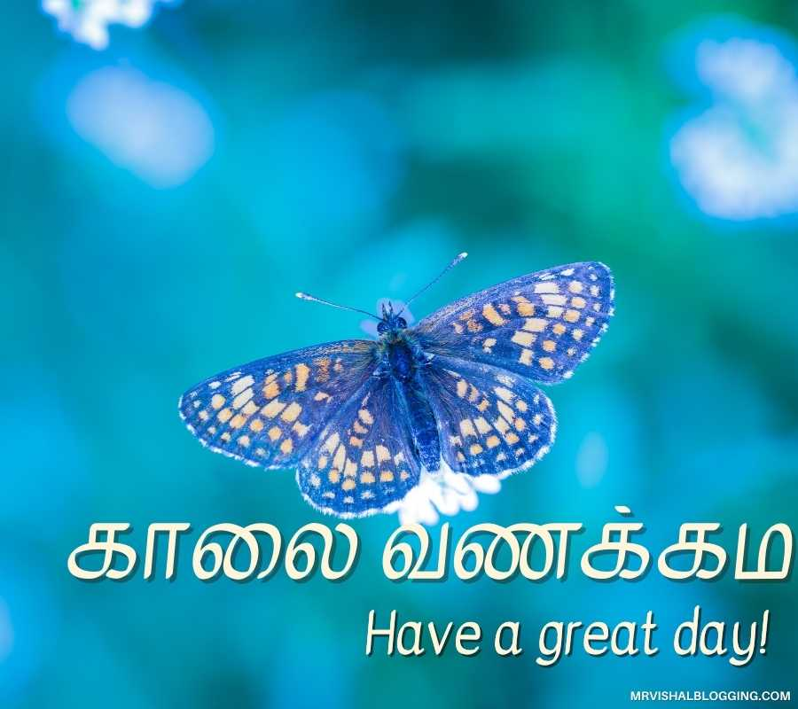 Good Morning Wishes In Tamil Images