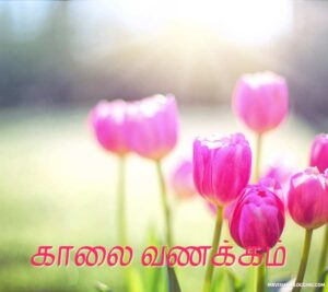 christian good morning images in tamil