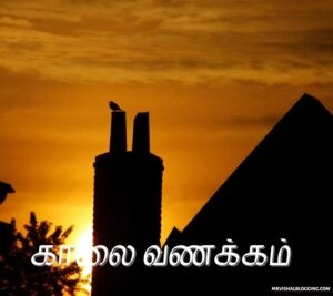good morning images download for whatsapp tamil