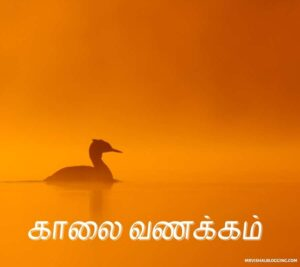 good morning images tamil today