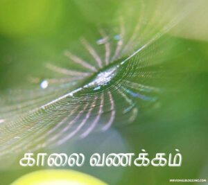 good morning sister images in tamil