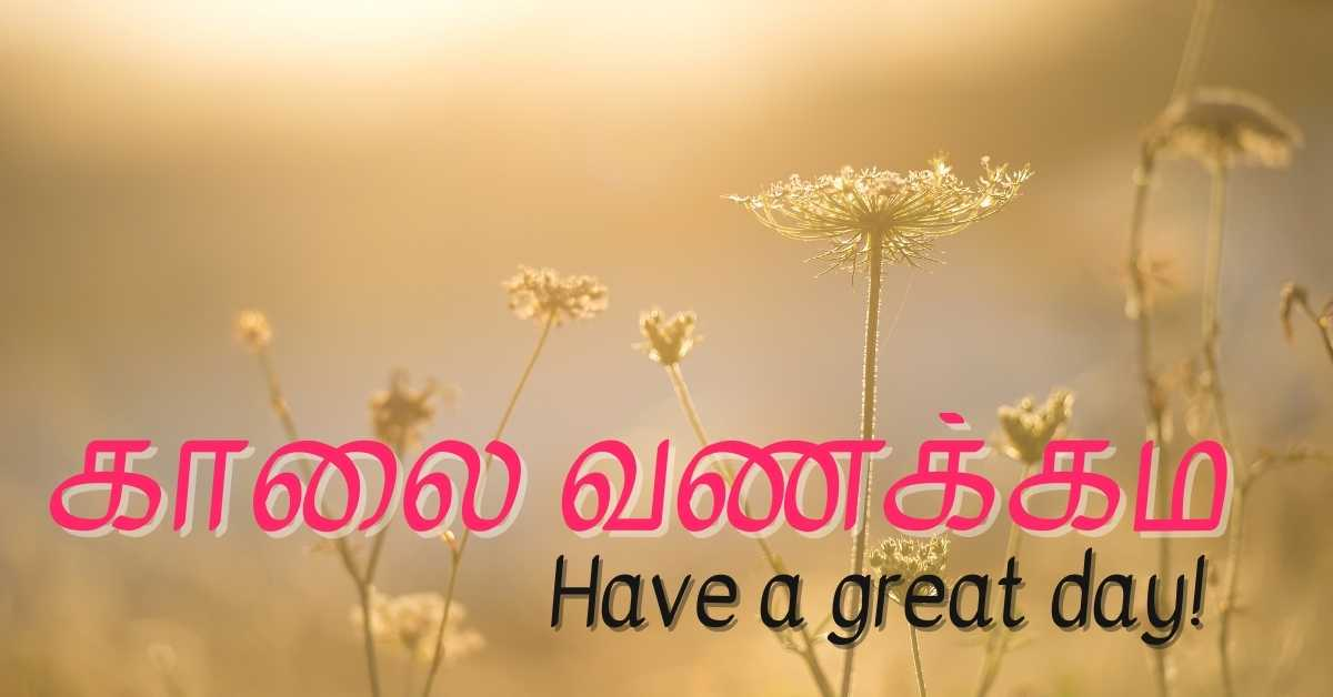 Good Morning HD Images In Tamil Free Download